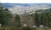 Randonnée Marche SAINT-AME - entre Duché de Lorraine et Abbaye du St Mont - Photo 11