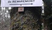 Randonnée Marche SAINT-AME - entre Duché de Lorraine et Abbaye du St Mont - Photo 7