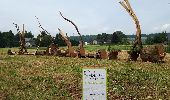 Trail Gesves - SENTIERS D'ART - 141 km - Ciney, Gesves, Hamois, Havelange, Ohey et Somme-Leuze - Photo 42