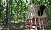 Trail Walk Gesves - SENTIERS D'ART - 141 km - Ciney, Gesves, Hamois, Havelange, Ohey et Somme-Leuze - Photo 29