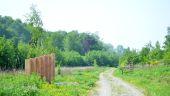 Point d'intérêt Havelange - Sentiers d'Art - Marche de l'évolution - Photo 1