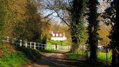place PUISEUX-EN-RETZ - Point 20 - Photo 12