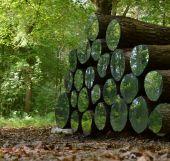 Point d'intérêt Ohey - Sentiers d'Art - Mirror Passage - Photo 1