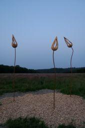 Point d'intérêt Somme-Leuze - Sentiers d'art - Bourgeons - Photo 2