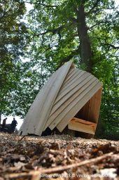 Point d'intérêt Havelange - Sentiers d'art - Tout encoquillé - Photo 2