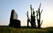 Point d'intérêt Havelange - Sentiers d'Art - Le Petit bois  - Photo 1