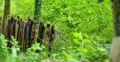 Point d'intérêt Gesves - Sentiers d'Art - Sans refuge ou nus comme un ver  - Photo 1