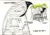 Point d'intérêt Gesves - Abri artistique Sentier d'art  - Photo 1