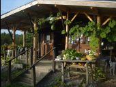 Point d'intérêt Somme-Leuze - Le jardin de légumes oubliés - Le Pré Gourmand - Photo 1