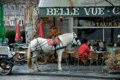 place Rochefort - Rue des Grottes - Photo 2
