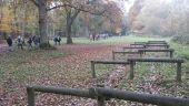 place TRAPPES - Parcours sportif - Photo 1