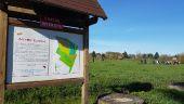 Point d'intérêt MAUREPAS - Jachère florale - Photo 1