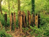 Point d'intérêt Gesves - Sentiers d'Art - Sans refuge ou nus comme un ver  - Photo 2