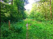 place LACROIX-SAINT-OUEN - Point 30 - Photo 3