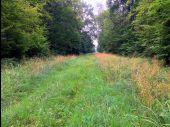 place LACROIX-SAINT-OUEN - Point 40 - Photo 1