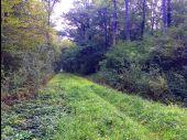 place LACROIX-SAINT-OUEN - Point 41 - Photo 2