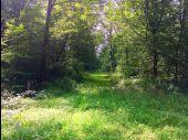 place SAINT-SAUVEUR - Point 50 - Photo 1