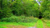place MORIENVAL - Point 32 - Photo 1