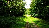 place MORIENVAL - Point 34 - Photo 1