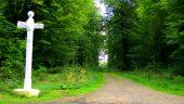 place MORIENVAL - Point 30 - Photo 2